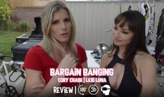 Bargain Banging VR Review – MILF VR