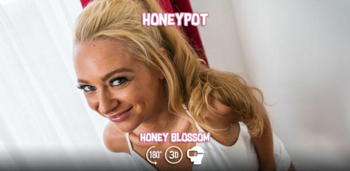 Honeypot - Honey Blossom